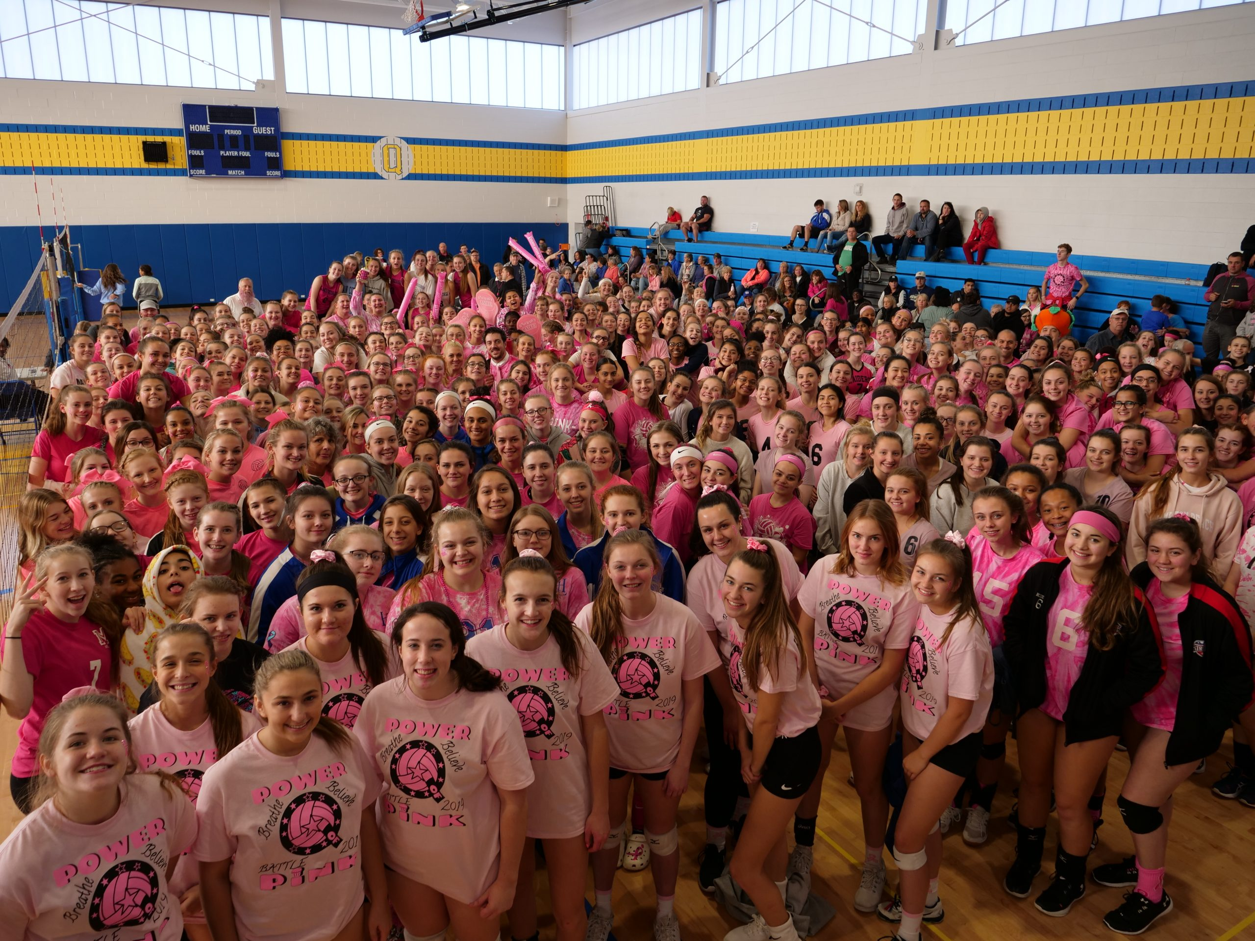 Power of Pink 2019 Image