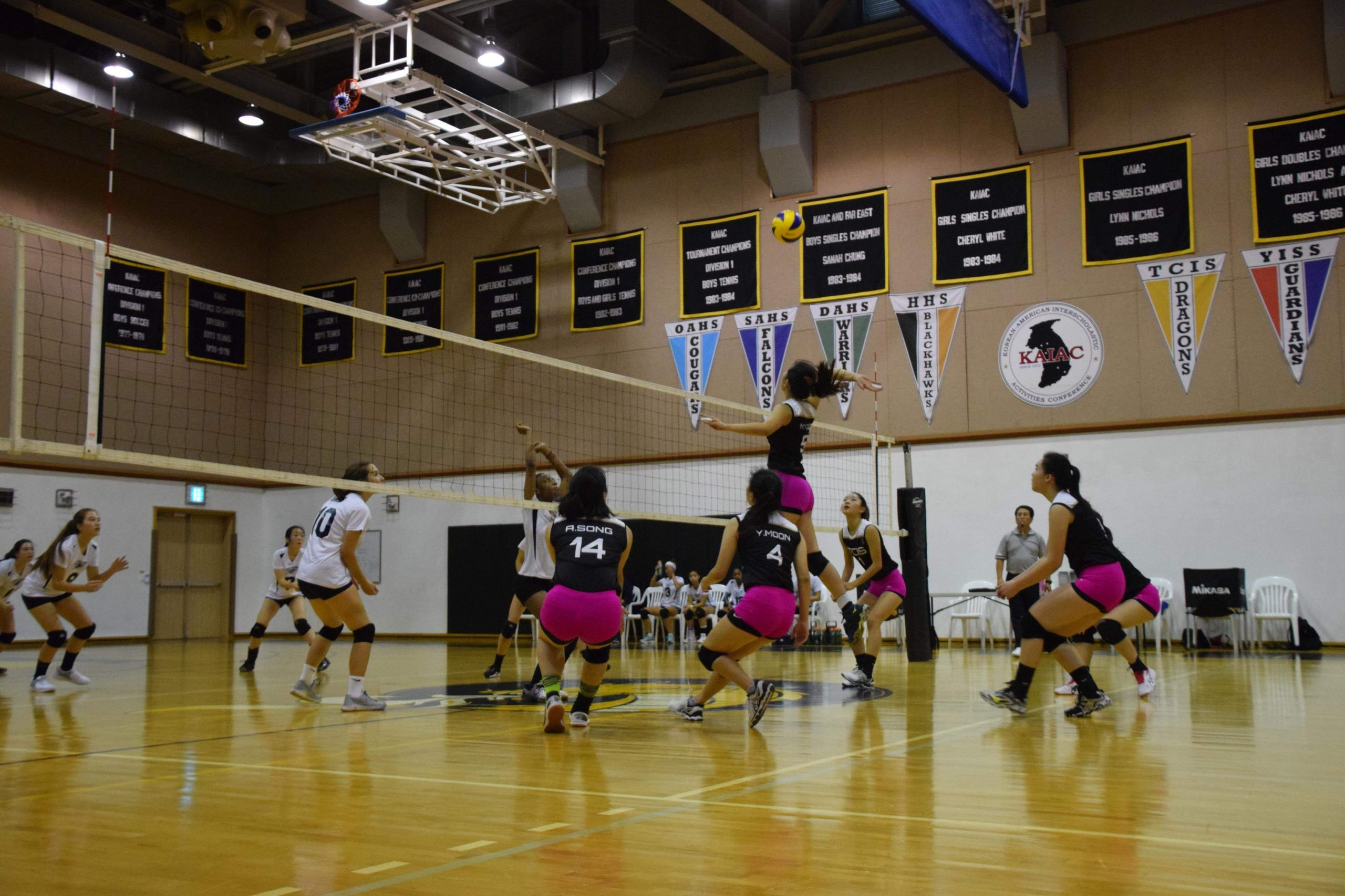 Libby's team playing on Dig Pink night.