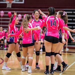 Dig Pink Jerseys Oakton Volleyball